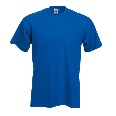 Printed blank t shirts bigcoast brands for Name brand golf shirts direct